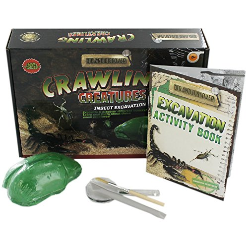 dig-and-discover-crawling-creatures