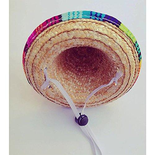 Haustier Hund Strohhüte Sonnenschutz Sombrero-Hut Für Hunde Katzen Partyhut Mexikanische Art Kostüm (2 Stück, Elastisch Band)