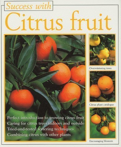 success-with-citrus-fruit-of-sigrid-hansen-catania-on-29-may-1998