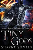 Tiny Gods: A Nate Temple Supernatural Thriller Book 6 (The Temple Chronicles) (English Edition)