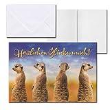 Cartolini Aufklappkarte Karte Sprüche Zitate Briefumschlag Geburtstag Erdmännchen 12 x 8,2 cm