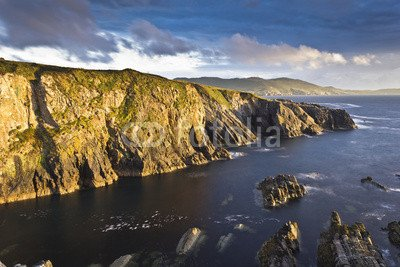 alu-dibond-bild-140-x-90-cm-cliffs-and-coast-allihies-beara-peninsula-ireland-bild-auf-alu-dibond