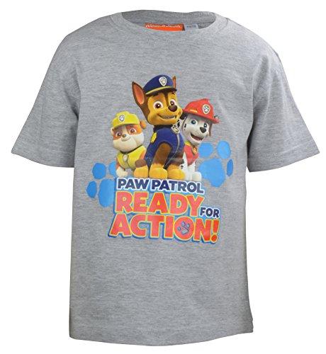 United Labels Jungen T-Shirt Paw Patrol Ready For Action-0122009, Grau (Grau Melange), Small (Herstellergröße: 110/116)