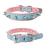 Balock Schuhe Verstellbares Hundehalsband,Strapazierfähiges,Scharfes, Verziertes Lederhalsband, für große Dog Pet Pitbull Mastiff (Hellblau, XS)