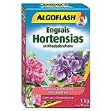 ALGOFLASH Engrais Hortensias et Rhododendrons, Jusqu'à 33 pieds, Dosette incluse, 1 xkg, HORTO1
