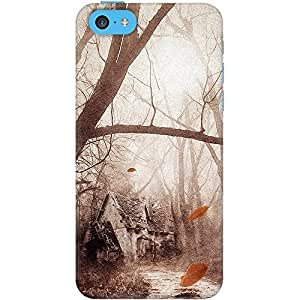 DailyObjects Secret Place Case for iPhone 5C