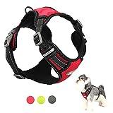 TUFF HOUND Hundegeschirr Oxford und Nylon Material mit Reflektierenden Streifen, Mesh Gepolstert, Anti-Plötzlich Ziehen, Perfekte Größen für Hunde (XL, Red)