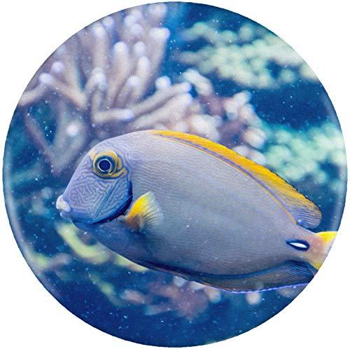 Azeeda 58mm 'Tropischer Fisch' Pin Knopf-Abzeichen (BB00006870) -