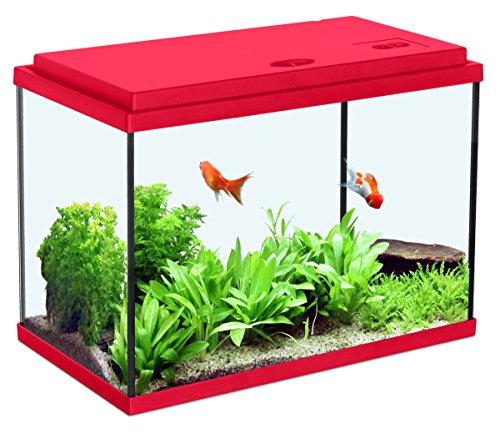 Zolux - Acuario infantil, color rojo cereza