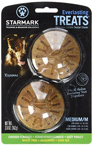 Starmark Everlasting Dog Treat Chicken