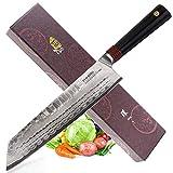 RING D Clever knife 8.5'- Acero Inoxidable Japonés AUS-10 Premium en Carbono de Alta Calidad con Diseño Exclusivo en Damasco Dragon-Keel