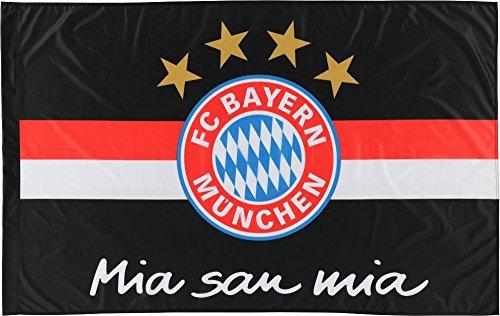 FCB Fahne Flagge Hissfahne Logo 250x150 FC Bayern M/ünchen