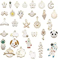 Bracelet Charms,30pcs White Designer Moon Cat Clouds Enamel Fruit Carrot Butterfly Charms Earring Necklace Bracelet Charms Pendants for DIY Jewelry Making and Crafting