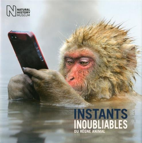 Instants inoubliables du règne animal