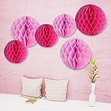 6x Wabenbälle Honeycomb Balls Pompoms Papier Pink Rosa Dekoration Partydekoration für Hochzeit Baby Shower Geburtstag - 15CM & 20CM
