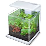 Aquadistri SF Wave 15 Aquarium weiss, 18 l