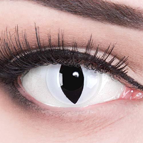 Meralens Crazy Viper Kontaktlinsen mit Pflegemittel ohne Stärke