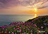 Fototapete LANDS END 368x254 Sonnenuntergang Klippen rosa violette Blumen Blüten