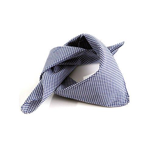 ALMBOCK Trachtentuch | Trachten Halstuch aus Seide, Baumwolle oder Mikrofaser für Damen & Herren | Trachtentücher in vielen Farben & Mustern