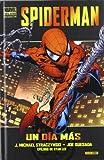 Spiderman: un día más