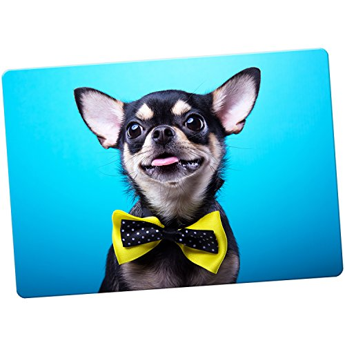 chihuahua-mexicain-taco-bell-chien-aimant-pour-refrigerateur-chihuahua-wears-yellow-bow-tie-l