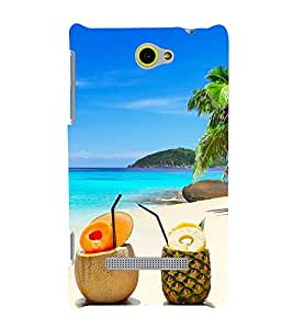 Enjoy The Nature 3D Hard Polycarbonate Designer Back Case Cover for HTC Windows 8S