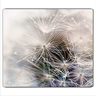 FTB Gsmarkt | Herdabdeckplatte Schneidebrett Spritzschutz 60x52 | Bild auf Glas | Sicherheitsglas Gehärtetes Glas Bild | Motiv Pusteblume
