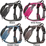 Comfort Walk Pro Harness l Wild Rose