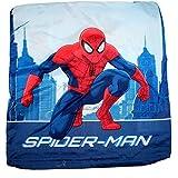 Marvel Spider-Man Housse de coussin 40x 40cm