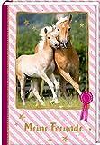 Freundebuch – Pferdefreunde – Stute mit Fohlen