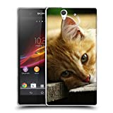 Just Phone Cases Schutz Hülle TPU Case Schutzhülle Silikon Tasche Dünn Transparent // V00004287 Katze liegend auf Holzbrettern // Sony Xperia Z L36H C6603