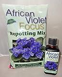 African Violett Umtopf Mix 2L und African Violet Focus 300ml