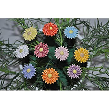 10 Keramikblumen: Gänseblümchen, bunt ca. 2,50 cm von SylBer-Ceramics aus Markkleeberg
