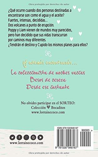 Hecho con amor: Volume 1 (Colección Bocaditos)