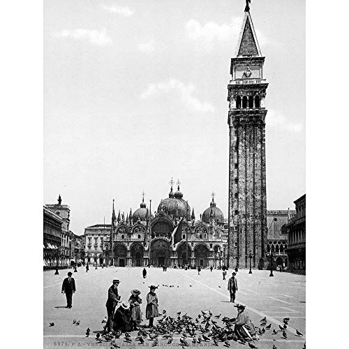 Wee Blue Coo Piazza San Marco Campanile Venice Italy 1895 Old BW Art Print Poster Wall Decor 12X16 Inch