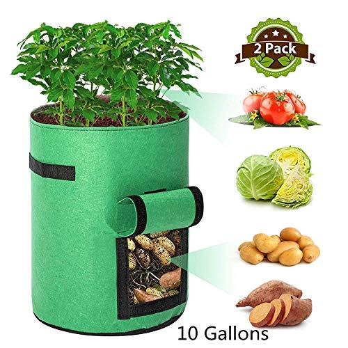 Tvird Pflanzen Tasche,Kartoffel Pflanzsack 10 Gallonen mit Griffen und Sichtfenster Klettverschluss,dauerhaft AtmungsaktivBeutel Gemüse wachsen Pflanztasche -2 Pack(Grün)