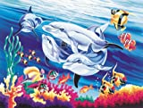 Reeves Malen nach Zahlen für Erwachsene Tiere 30 x 40cm, 20 Farben, Motiv - Delfine