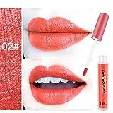 DaySing Lipstick Lèvres Lip Gloss,1 Pc Rouge À LèVres ÉTanche Longue DuréE Mat Rouge À LèVres CosméTique Beauté Maquillage Maquillage Waterproof Brillant