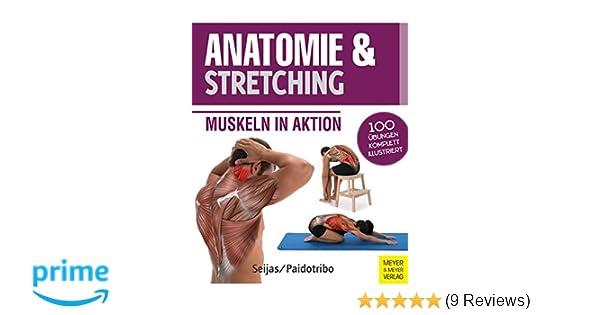 Anatomie & Stretching Anatomie & Sport, Band 2 : Muskeln in Aktion ...