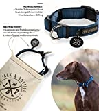 Hundehalsband Balu Neopren gepolstert - Hunde Halsband Jack & Russell div. Größen und Farben (Halsumfang S (28-35 cm), Blau)