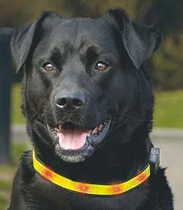 Collier de sécurité réfléchissant avec lumières clignotantes pour chiens - taille 3