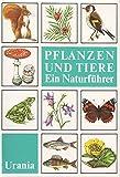 Pflanzen und Tiere ein Naturführer