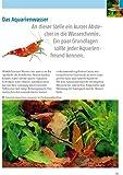 Kleine Aquarien: Extra: Nano-Aquarien - 5