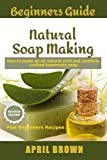 Die besten Crock-Pot Blenders - Beginners Guide Natural Soap Making: How to make Bewertungen
