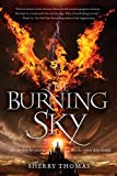 The Burning Sky (Elemental Trilogy, Band 1)