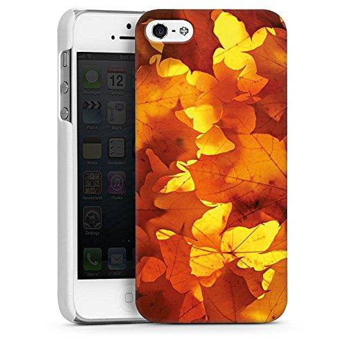 Apple iPhone 4 Housse Étui Silicone Coque Protection Automne Feuilles Feuillage CasDur blanc