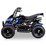 Miniquad Kinder ATV Cobra blau / schwarz - 2