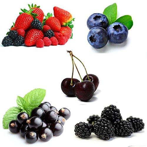 crazygadgetr-e-shisha-flavour-refill-liquid-juice-10ml-x-5-mix-berry-blue-berry-blackcurrant-black-c