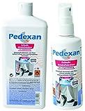 Pedexan Schuhdesinfektion 125 ml Sprühflasche und Pedexan 1 l Nachfüllpack zur Schuh-Innenpflege, Desinfektionsmittel gegen Bakterien und Pilze