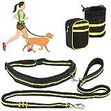 SlowTon Hundeleine, verstellbar, stoßdämpfend von 3 m bis 1 m, Taillengürtel mit Reißverschlusstasche und Trinkwasserbeutel, elastisch, Leuchtend, Grün